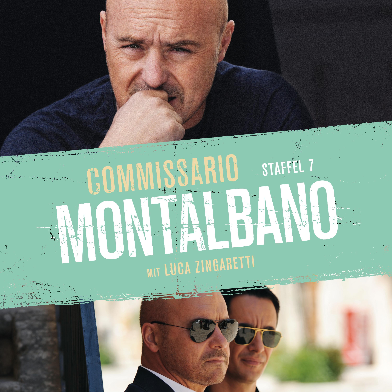 Commissario Montalbano (Staffel 7)